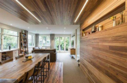 Expertise and vision transforms architect's own house